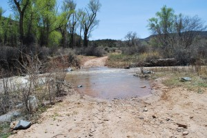 End of the Road - Impassable Escalante Creek