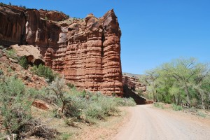 Canyon Walls Near Road
